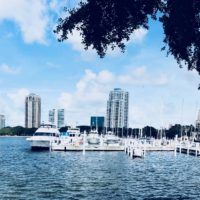 5 reasons Why We Love St.Petersburg, Florida